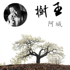 树王-喜马拉雅fm