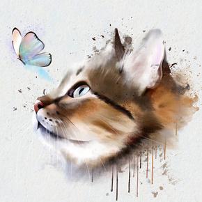 狮妹每日随记-喜马拉雅fm