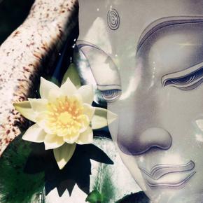 正向的力量-喜马拉雅fm