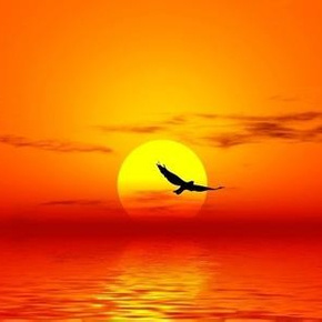 东阳 朗诵 山林子自然道德智慧书-喜马拉雅fm