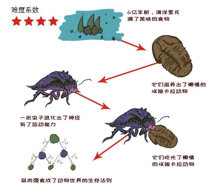 演化2.jpg