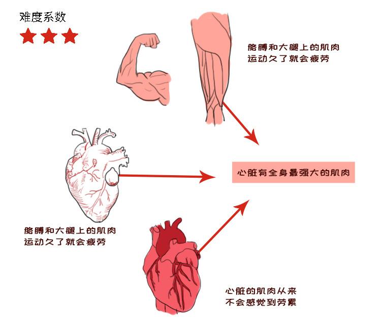 人体7.jpg