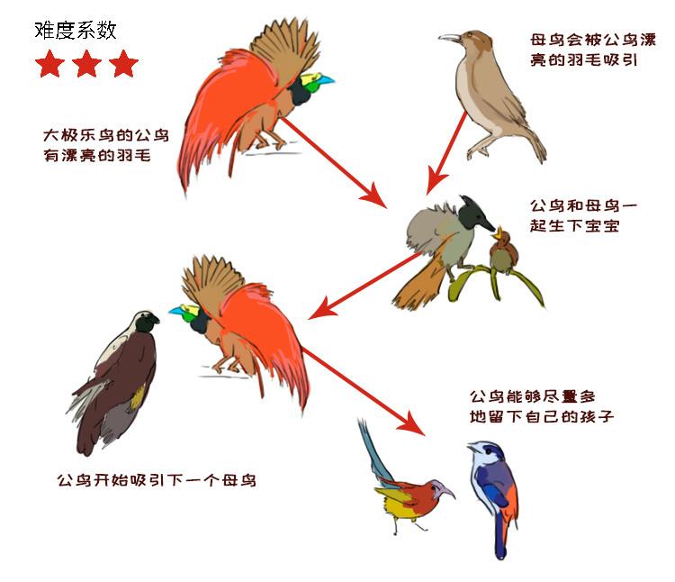 动物6.jpg