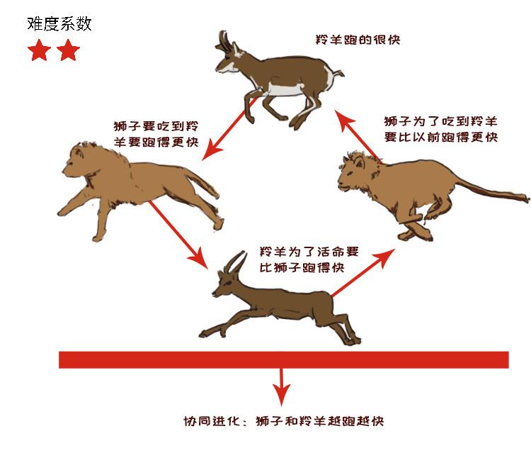 演化4.jpg