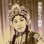 豫剧--桑振君经典原声