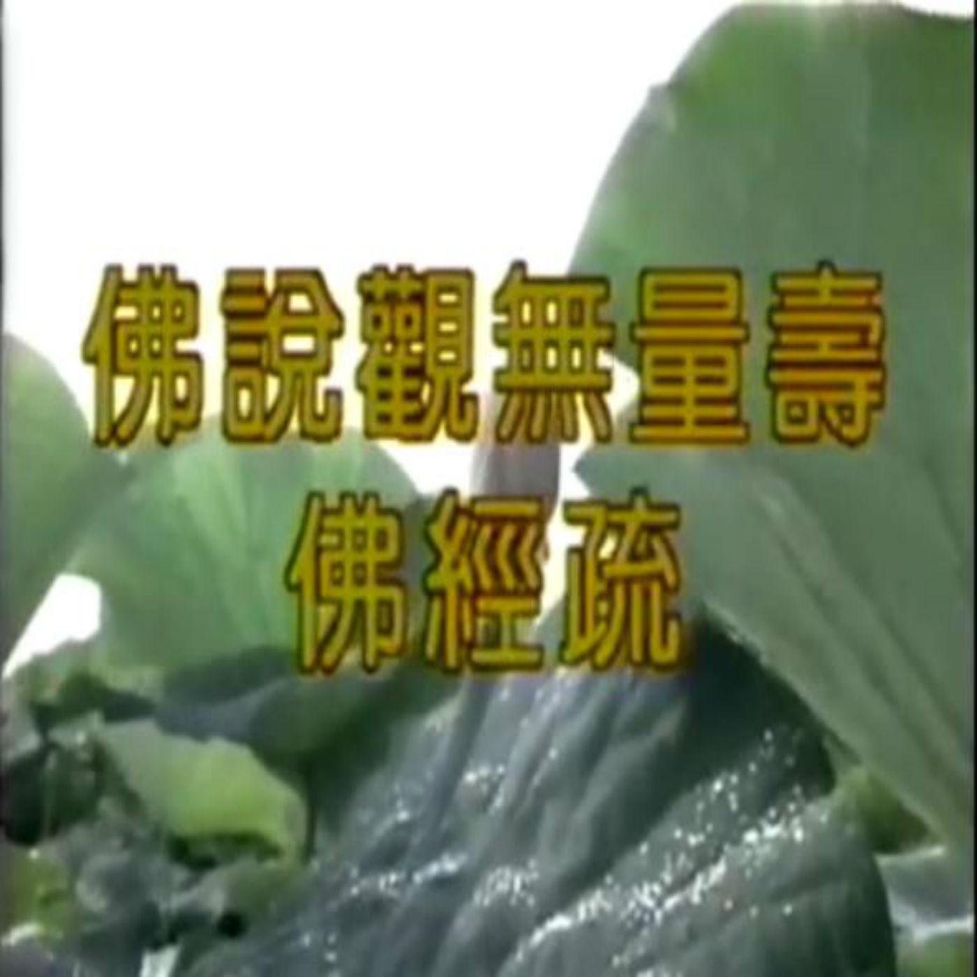 净空法师-佛说观无量寿佛经(疏)(全)