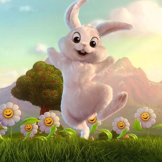 兔开头的成语每个成语都有动物
