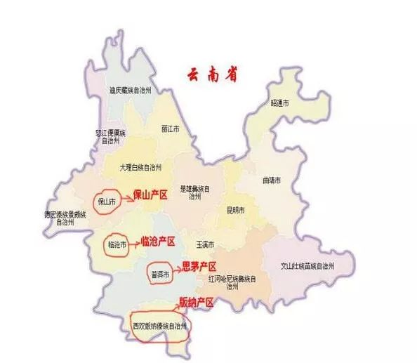 吉普号 茶山黑话138 深度解析普洱茶四大产区图片