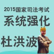 2015司法考试系统强化杜洪波-理论法 第十一节