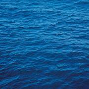 送你一片海