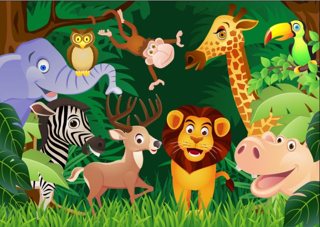 探秘:奇妙的动物世界