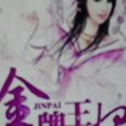 金牌王妃 之赵王篇(大结局)