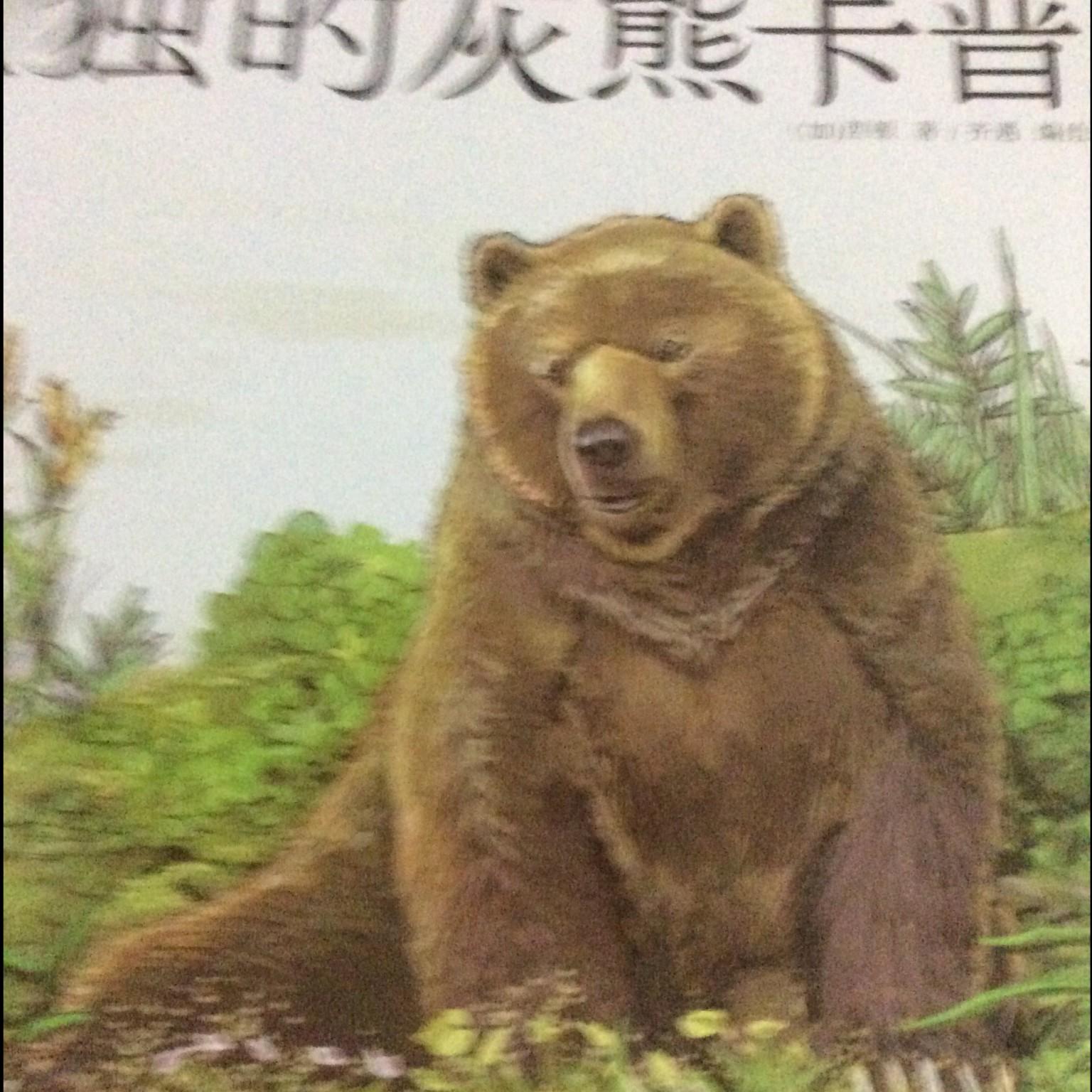 【西顿动物记科普绘本】在线收听