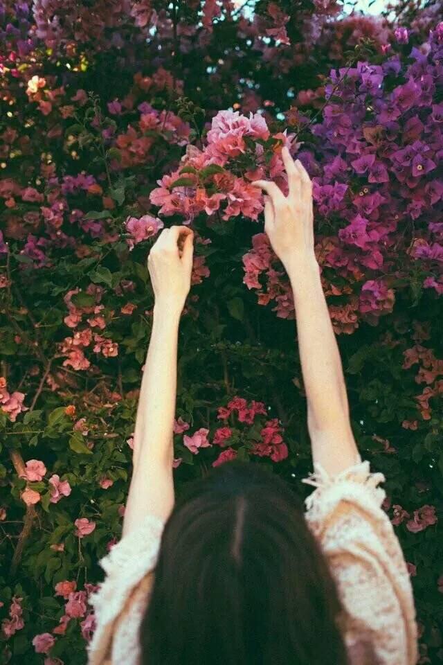 愿你有诗,有爱,有期待。