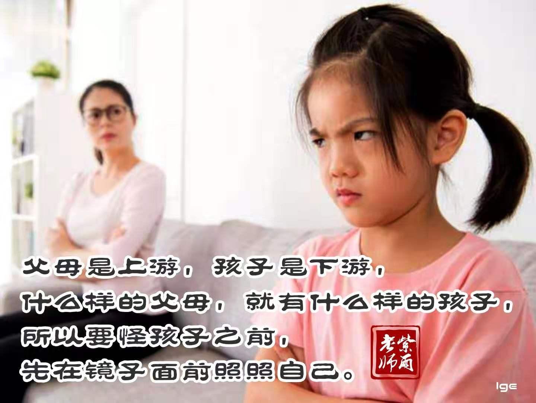 家长不添乱,就能吸引助缘让休学孩子回归积极学习主动追赶的轨道