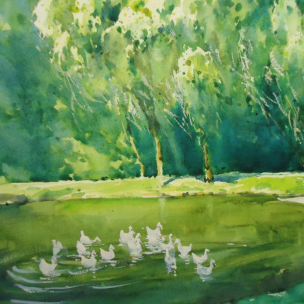 贾平凹:池 塘