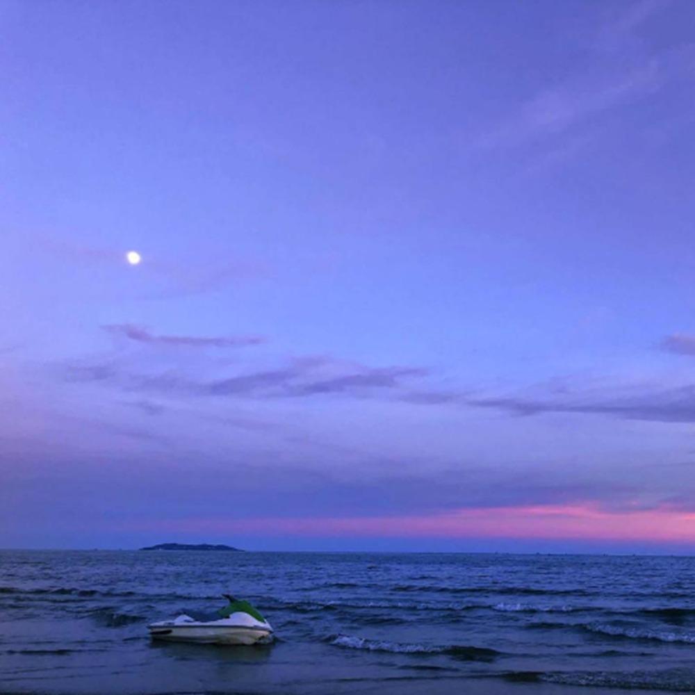 申瑞瑾:到哪里寻找心中的海